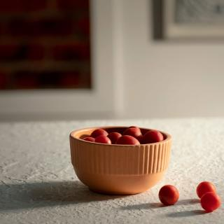 Sienna Terracotta Bowl