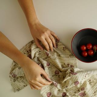 classic s/2 dish towel